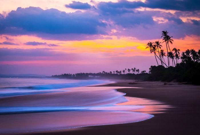 Сиреневый закат на морском пляже с пальмами пляже